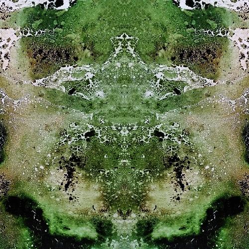 JPEG_20200330_121536_1437912104213242462_mirror