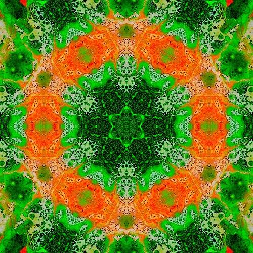 image3A12877_mirror6