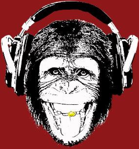 monkey_headphones_t_shirt-ra7092a41c8bd4c5cb8aed9d2cbd131d5_k2gd1_307
